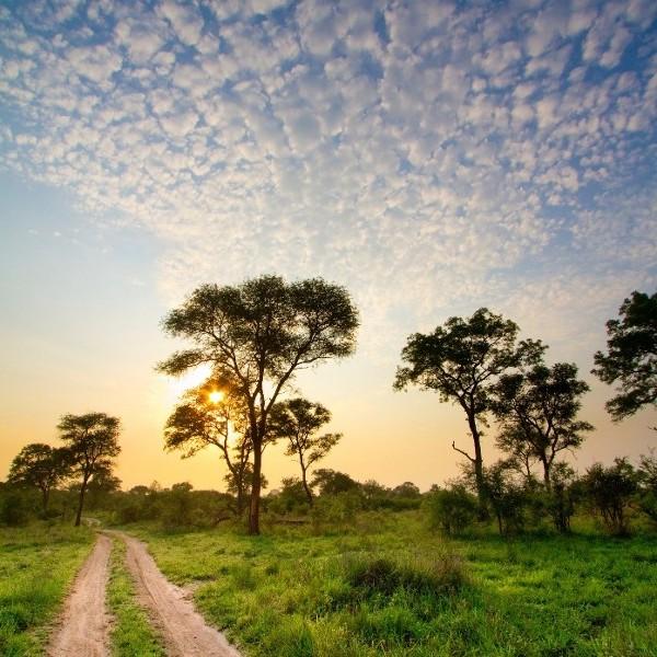 River-running Zambia