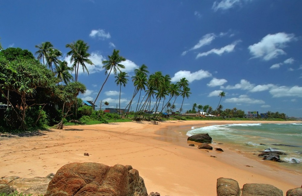 Essential Sri Lanka Tour