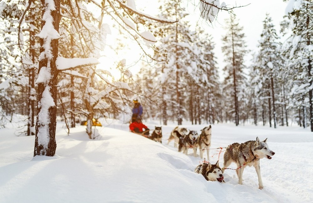 Lapland from Cork- 4*Overnight Trip 2019