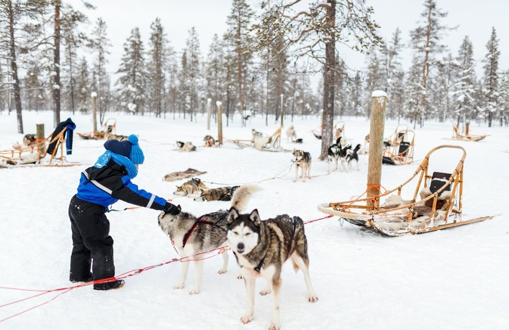 Lapland- Overnight Trip from Cork Dec 11th