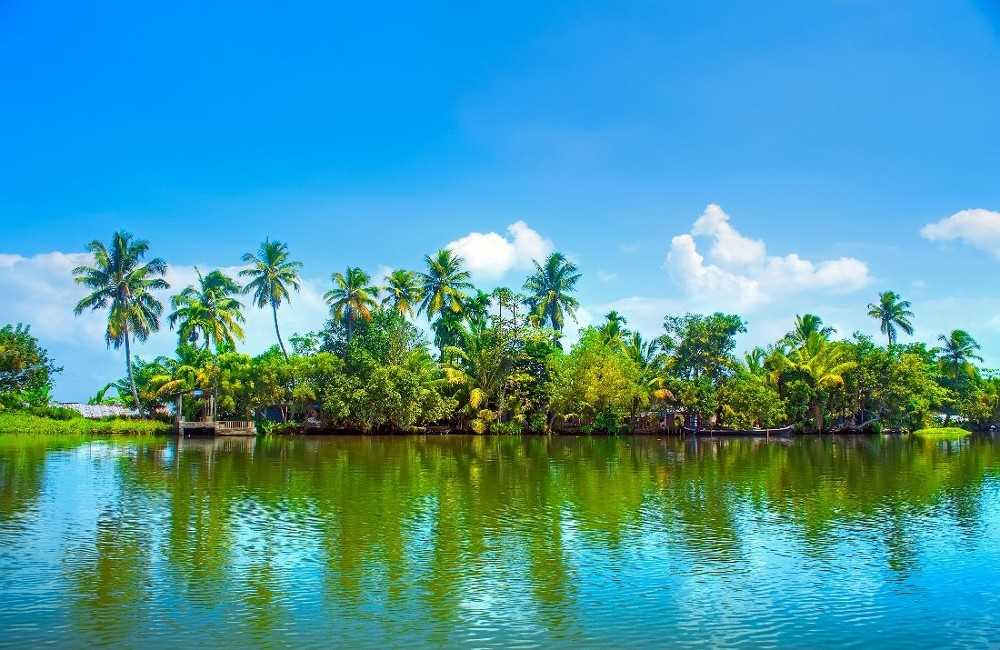 goa a paradise essay Period essay- goa, the basketball paradise originate beaches and lush album spatters example of a background research paper for science fair together in 3700 sq goa goa beaches essay most dollar holiday destinations of illinois.