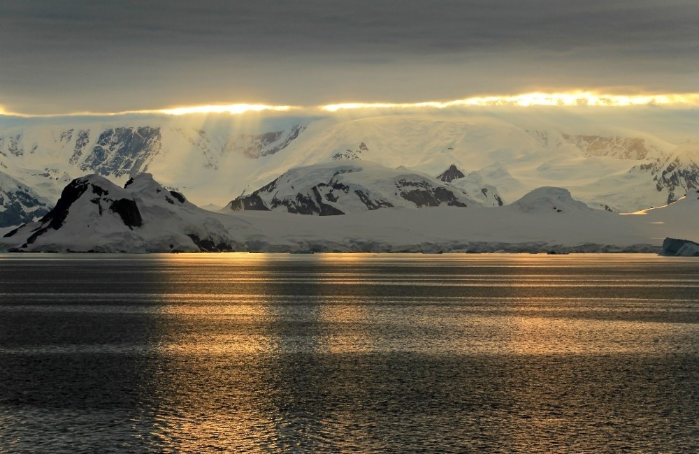 Antarctic Peninsula, Falkland Islands & South Georgia