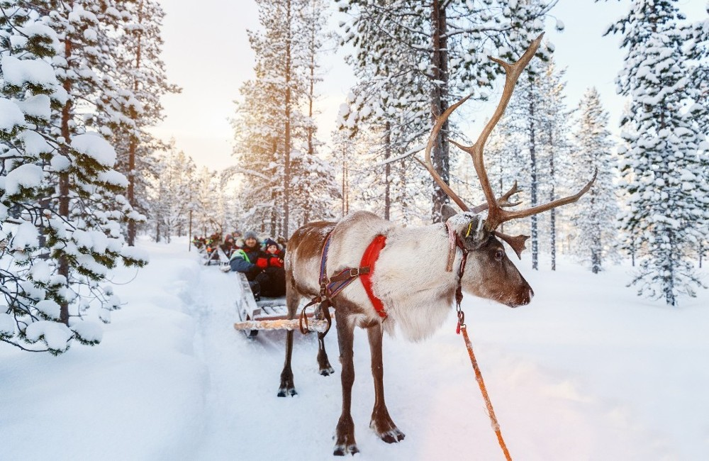 Lapland- Two Night Trip 2019