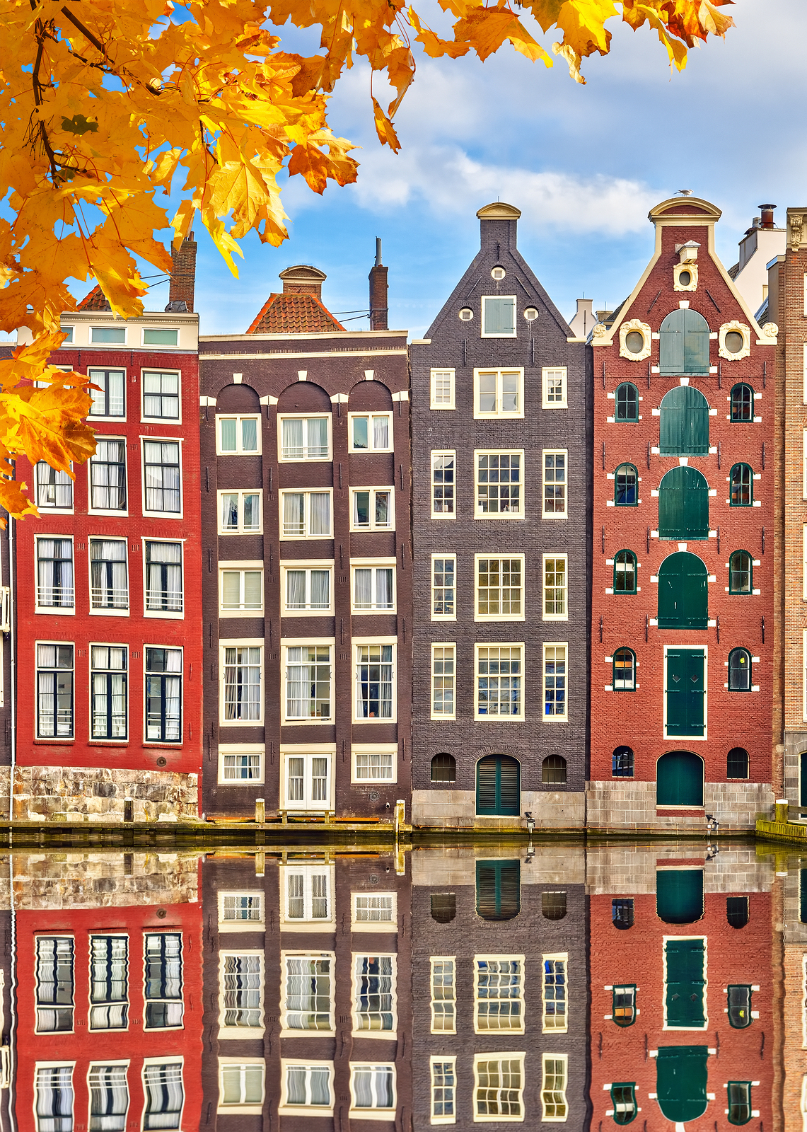 Shandon travel student leap card ezine offers for Architecture firm amsterdam